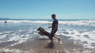 Ein Deutscher Schäferhund, der sein Leben lang angekettet war und gerettet wurde, sieht den Ozean zum ersten Mal