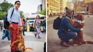 Free Hugs: Diese Hündin kann es nicht lassen, Menschen auf der Straße zu umarmen