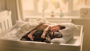 Märchenhafte Portraits von Babys, die mit Tieren kuscheln